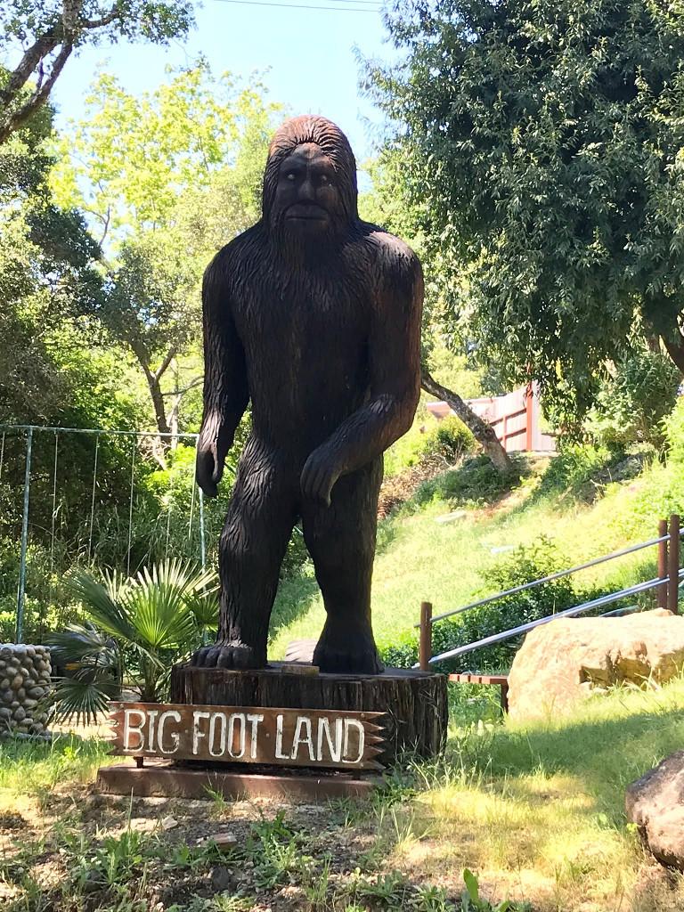 bigfoot_land.jpg