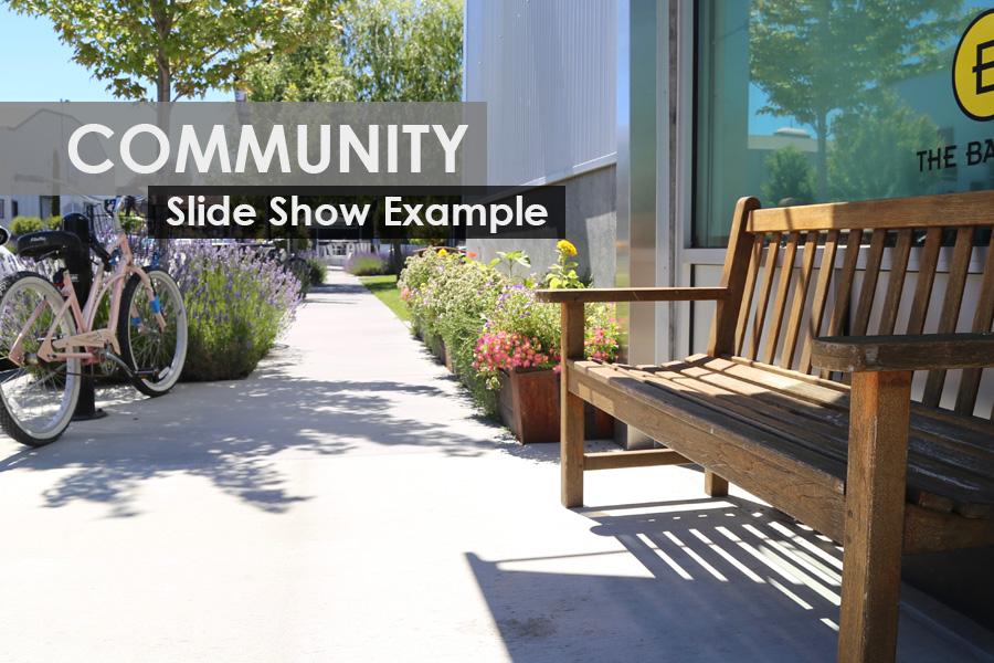 community_sample