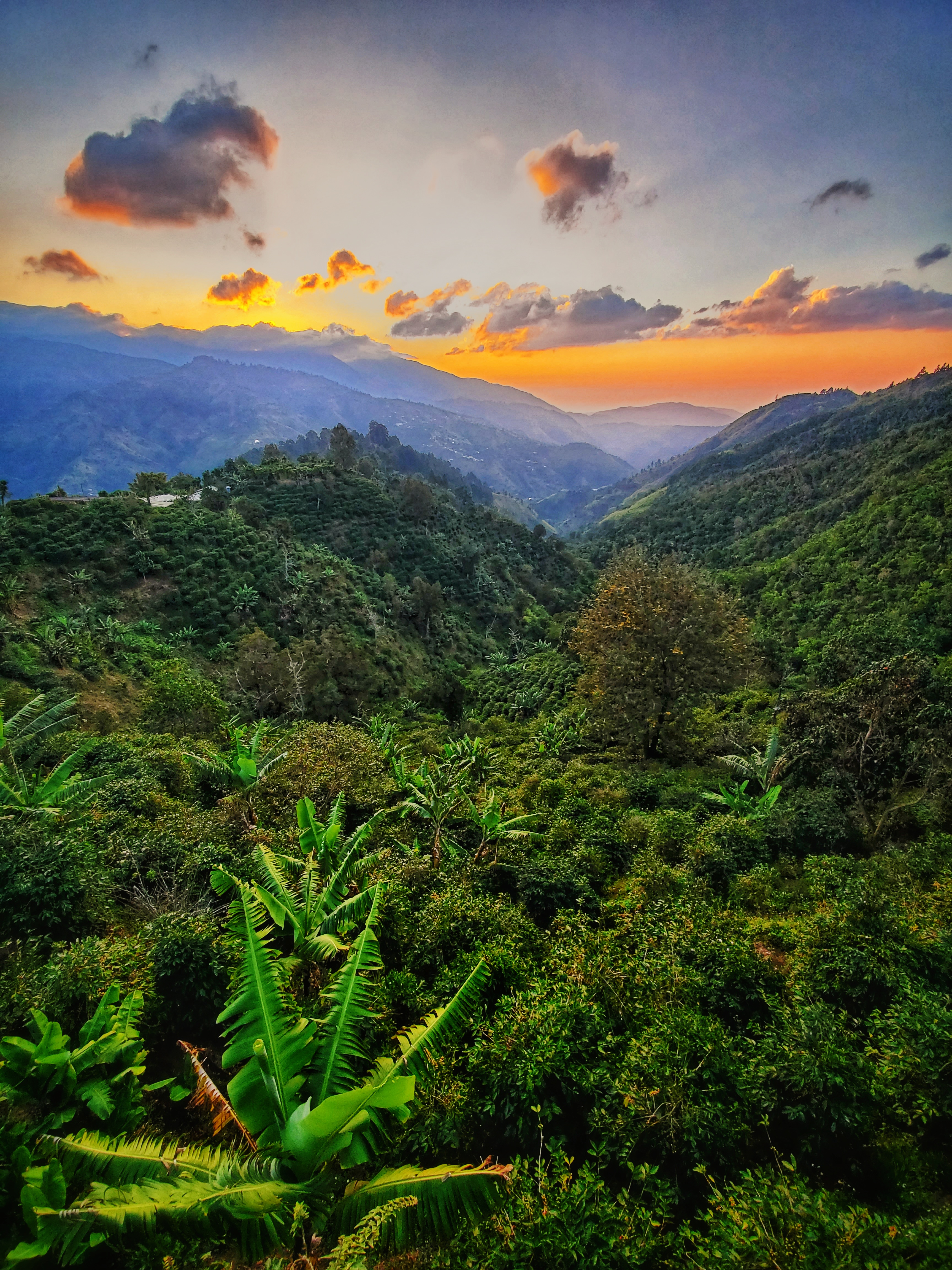 Colombia Sunrise