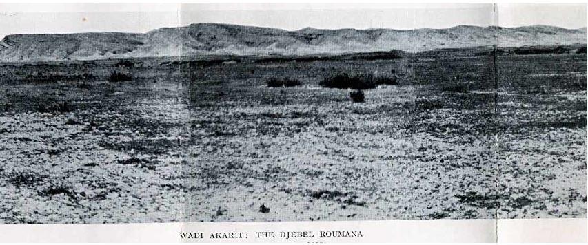 The plain at Wadi Akarit Tunisia North Africa 1943