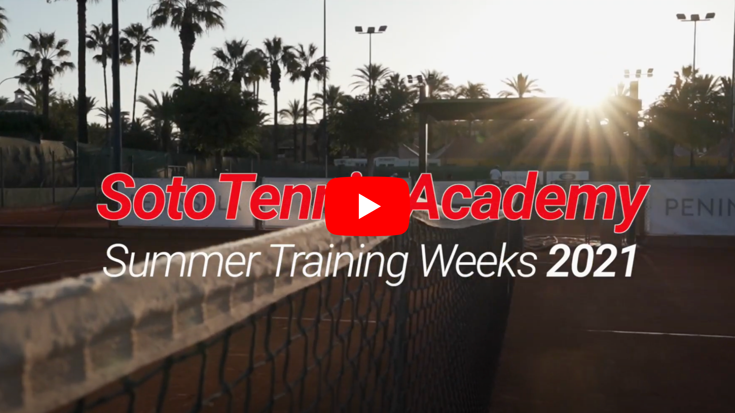 SotoTennis Academy Court with palm trees in background