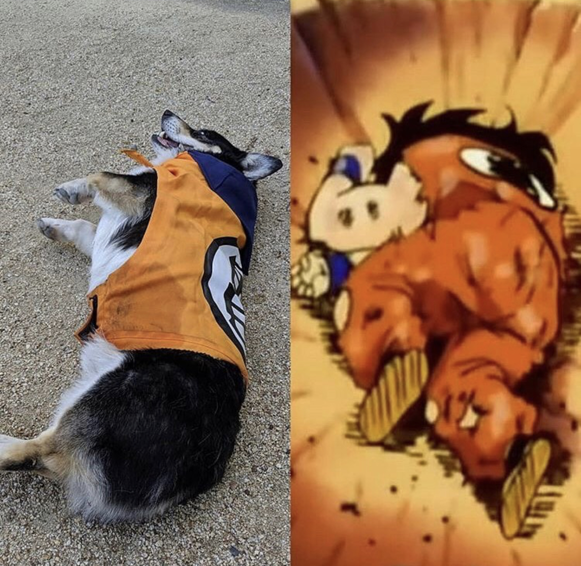 Yamcha from Dragon Ball z lying next to a dog