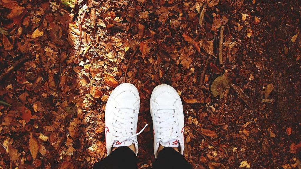 Review-Weekly_Blog_Amazon-Echo-Dad-Jokes_Sneakers