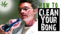 How to Clean Glass Bongs and Pipes Marijuana Tricks & Tips w/ Bogart #1