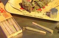 How To Roll RAW 98 Special Joints with Cone Loader Card: Cannabasics #31