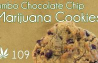 Jumbo Classic Cannabis Chocolate Chip Cookies Cooking with Marijuana #109