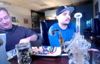 LIVE SMOKEOUT: Goodies from OG Cali Buds (Gold Joint, El Chapo OG, Scissor Hash and more!)