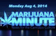 Marijuana Minute, Aug 04 2014: Is Marijuana Use Related to Psychotic Diseases Like Schizophrenia?