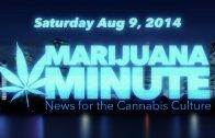 Marijuana Minute, Aug 09 2014: Fecal and Vaginal Bacteria in Medical Marijuana?