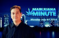 Marijuana Minute, July 07 2014: Washington Inevitable Edibles No vote in AR but maybe for DC