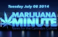 Marijuana Minute, July 08 2014: Massachusetts sued, Veteran PTS Marijuana Study Doctor fired