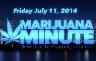 Marijuana Minute, July 11 2014 – Weed Smell No Reason for Search in MA, First WA Weed Buyer Fired