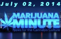 Marijuana Minute, July 2 2014: Colorado tax Dispute Washington Marijuana Supply Issues