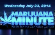 Marijuana Minute, July 23 2014: OR Wins Recreational MJ Vote, Snoop Smoked At The White House?