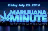 Marijuana Minute, July 25 2014: GOP Heavyweights Find Wedge Issue in Legalized Marijuana