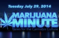 Marijuana Minute, July 29 2014: NY Times Wants Weed, Teen Marijuana Use Report Surprises