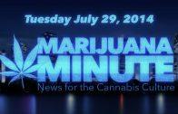 Marijuana Minute, July 29 2014: NY Times Wants Weed, Teen Marijuana Use Report Surprises