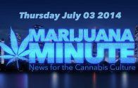 Marijuana Minute, July 3 2014: Denver Homicide Rate Drops 40% Carolina Okays Medicinal Research