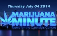 Marijuana Minute, July 4 2014: LA's 1st Marijuana Farmer's Market Pews Report Say America Want