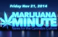 Marijuana Minute, Nov 21 2014: Marijuana Shrinks Cancer Tumors
