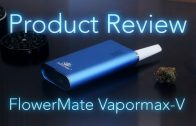 Saber Wax Pen Review