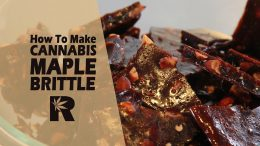 How to Make Cannabis Ginger Almond Maple Brittle (Estimate THC Potency in edibles):Canabasics #68