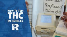 How To Measure THC & Calculate Dosage Of Cannabis Edibles with tCheck: Cannabasics #69
