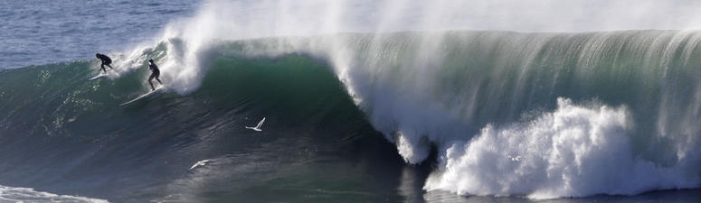Surfing Enshrined As California's Official Sport