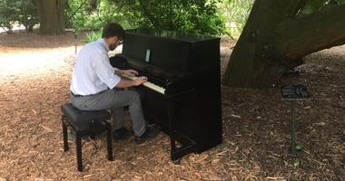 The Flower Piano festival is underway at the San Francisco Botanical Garden, allowing Barrett Feuis, 24, of Shanghai, to play some favorite melodies.