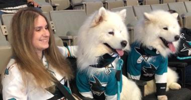 The San Jose Barracuda invited fans to bring their dogs to a recent game.