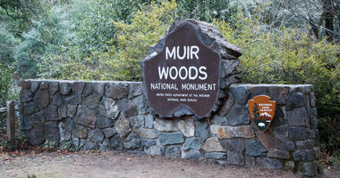 Muir Woods is part of the Golden Gate National Recreation Area.