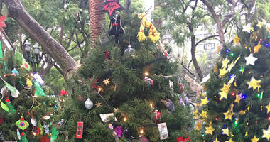 The Church of Satan complained that ornaments had been stolen from its Christmas tree.
