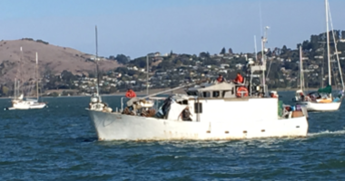 Sausalito has cracked down on allegedly living illegally on boats in the bay.