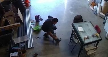 A man is seen on surveillance video petting a puppy in a San Jose warehouse just before he picks it up and drives away with it. (Luis Gutierrez)