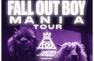Fall Out Boy at SAP Center in San Jose