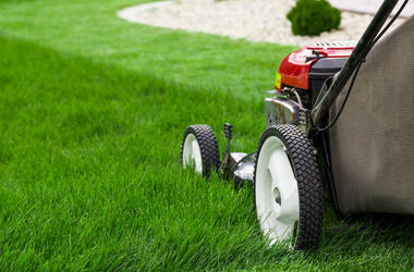 Lawn mower. Cutting, gardener (Photo credit: Mariusz Blach)