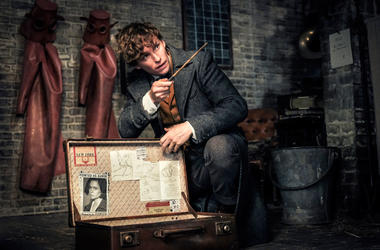 """Fantastic Beasts: The Crimes of Grindelwald"""