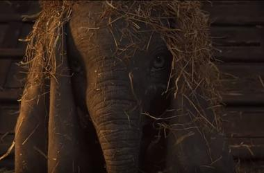 "The NEW ""Dumbo"" Trailer is Magical"