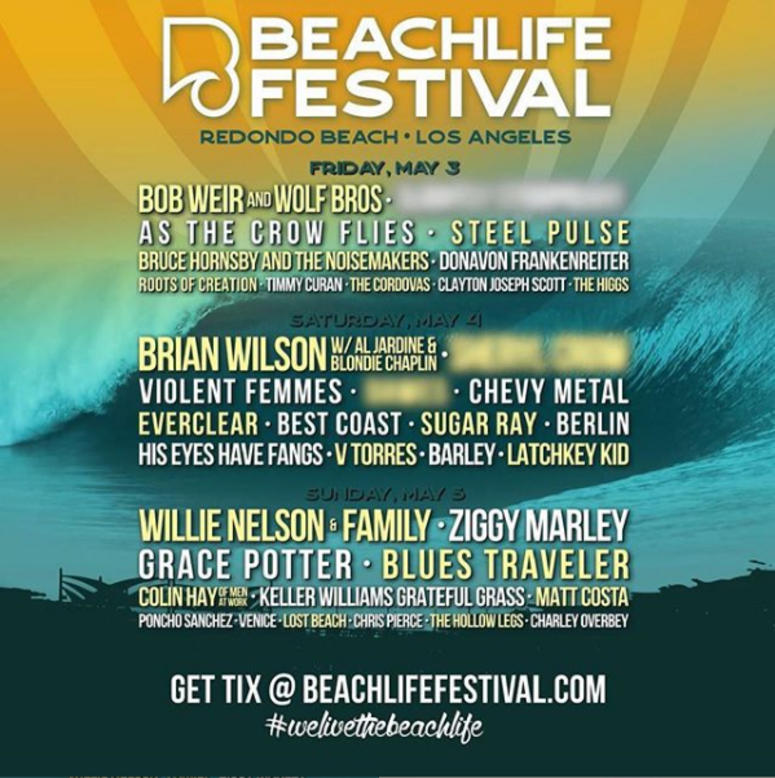 Image result for beach life festival