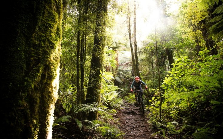 Building Stewardship One Trail at a Time