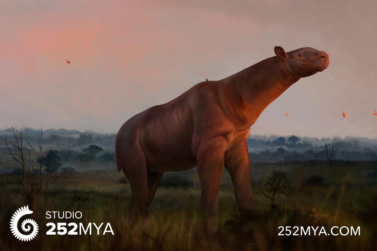 A life reconstruction of Paraceratherium