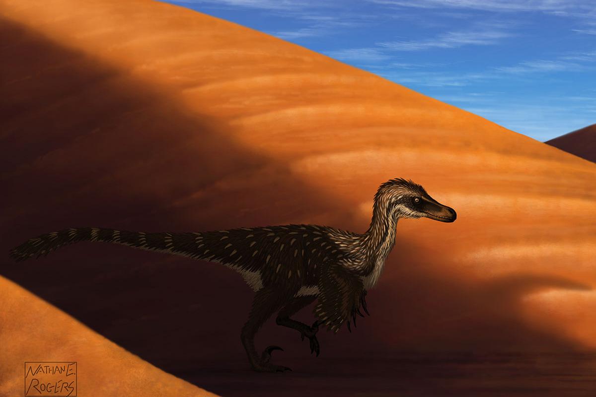 dinosaurs of the gobi desert earth archives