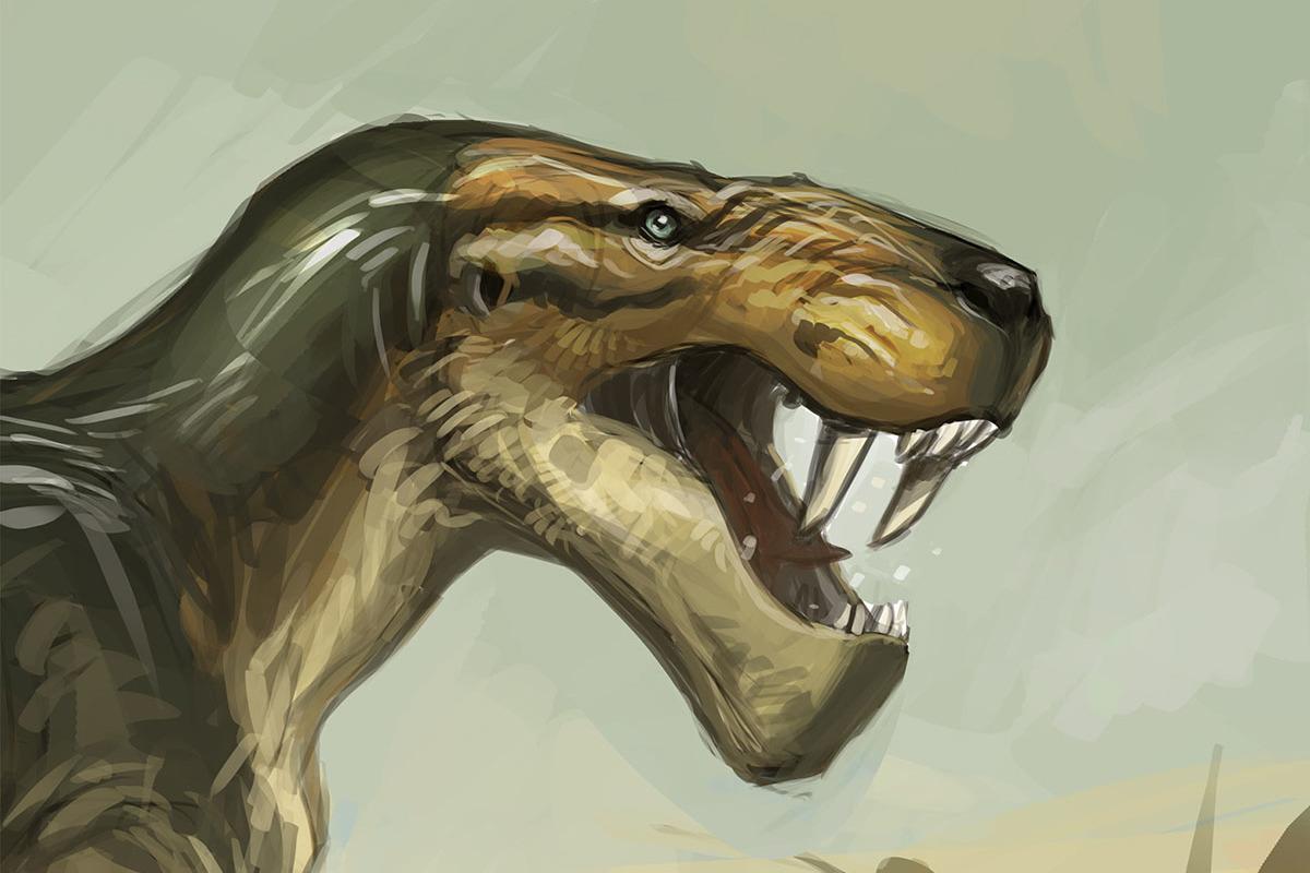 An indeterminate gorgonopsian