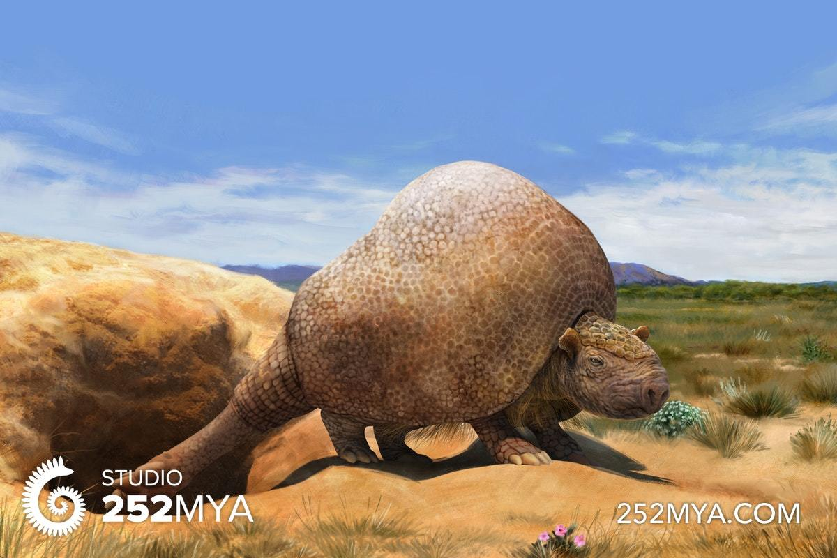 Life reconstruction of a glyptodont