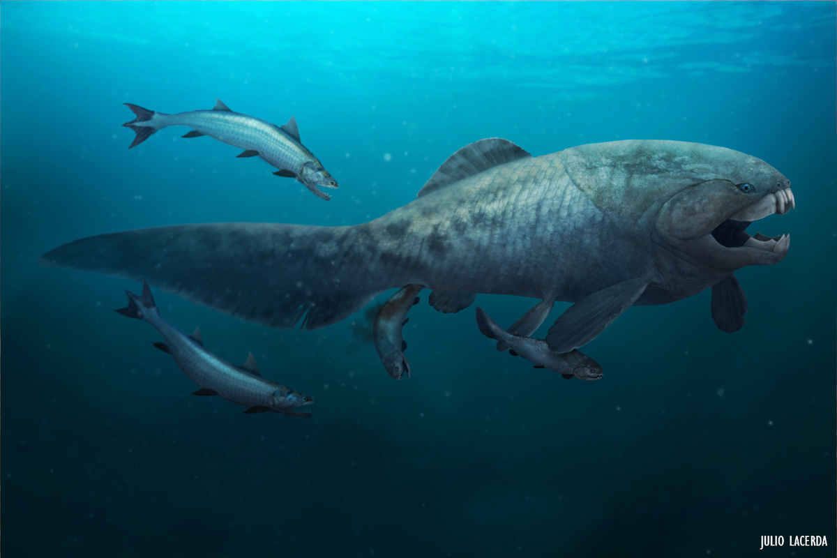 When monsters ruled the water: The Age of Fishes | Earth Archives