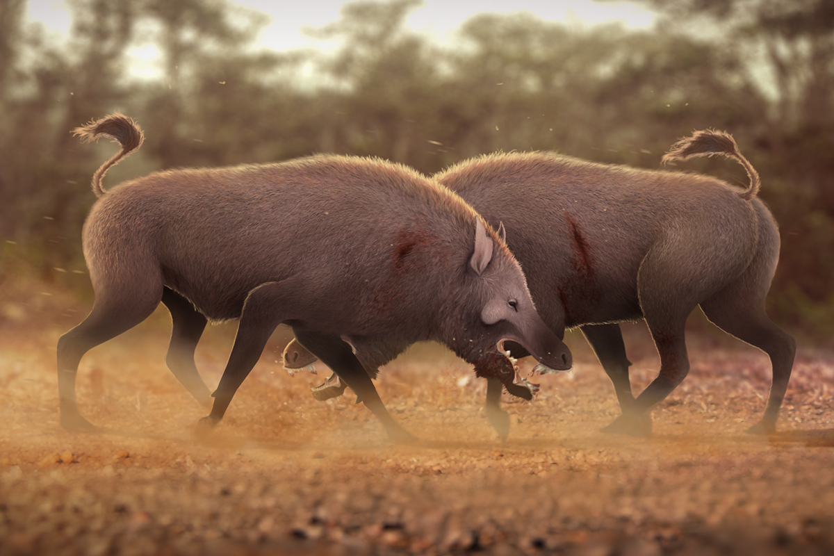 Dueling terminator pigs