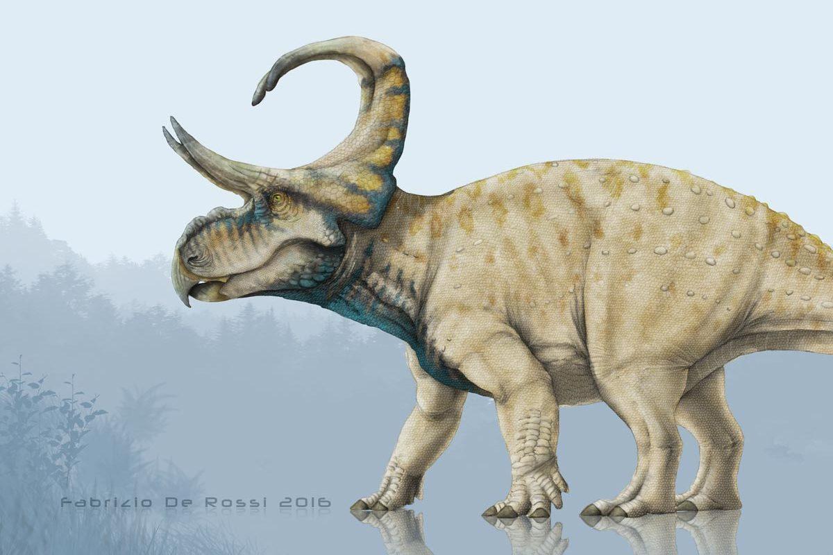 Machairoceratops cronusi