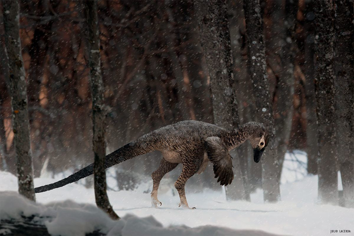 Alaskan Troodontid