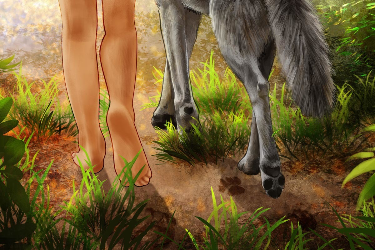 Wolves and hunter-gatherers had more things in common than we expected