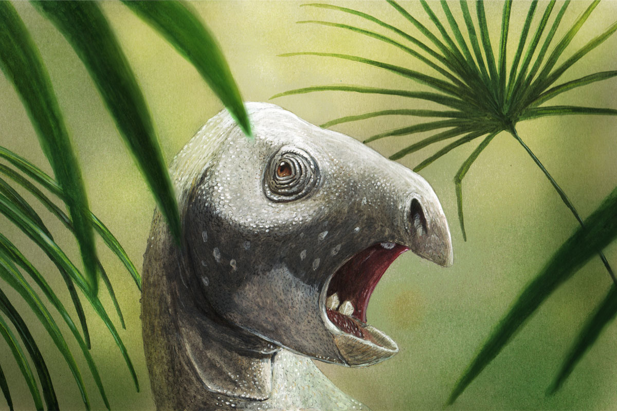 An artist's reconstruction of Matheranodon